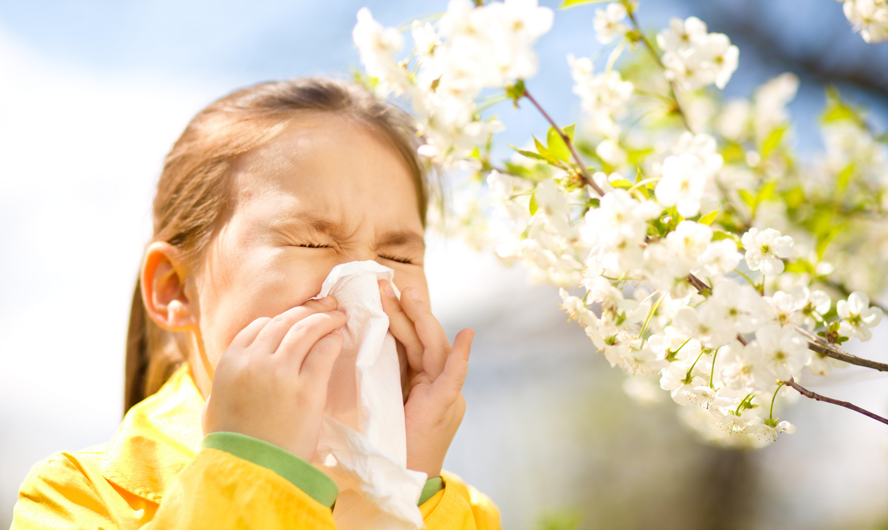 Can Acupuncture help with Hayfever?